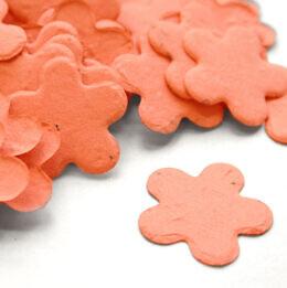 five_petal_confetti_coral