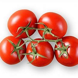 tomaatti gartenperle