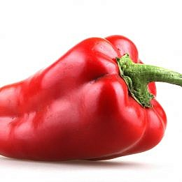 habanero chili